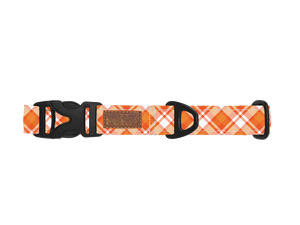 Candied Harvest™ Dog Collar | Water Resistant | Durable