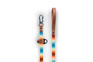Halcyon Crystals Slip-Lead Dog Leash | Durable