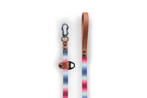 Halcyon Crystals Pink Slip-Lead Dog Leash | Durable