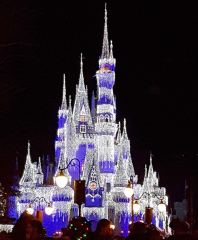 Magic Kingdom lit up!