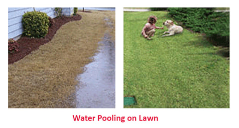 Water Pooling on Lawn