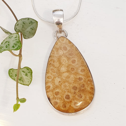 Fossil Coral, Pendant