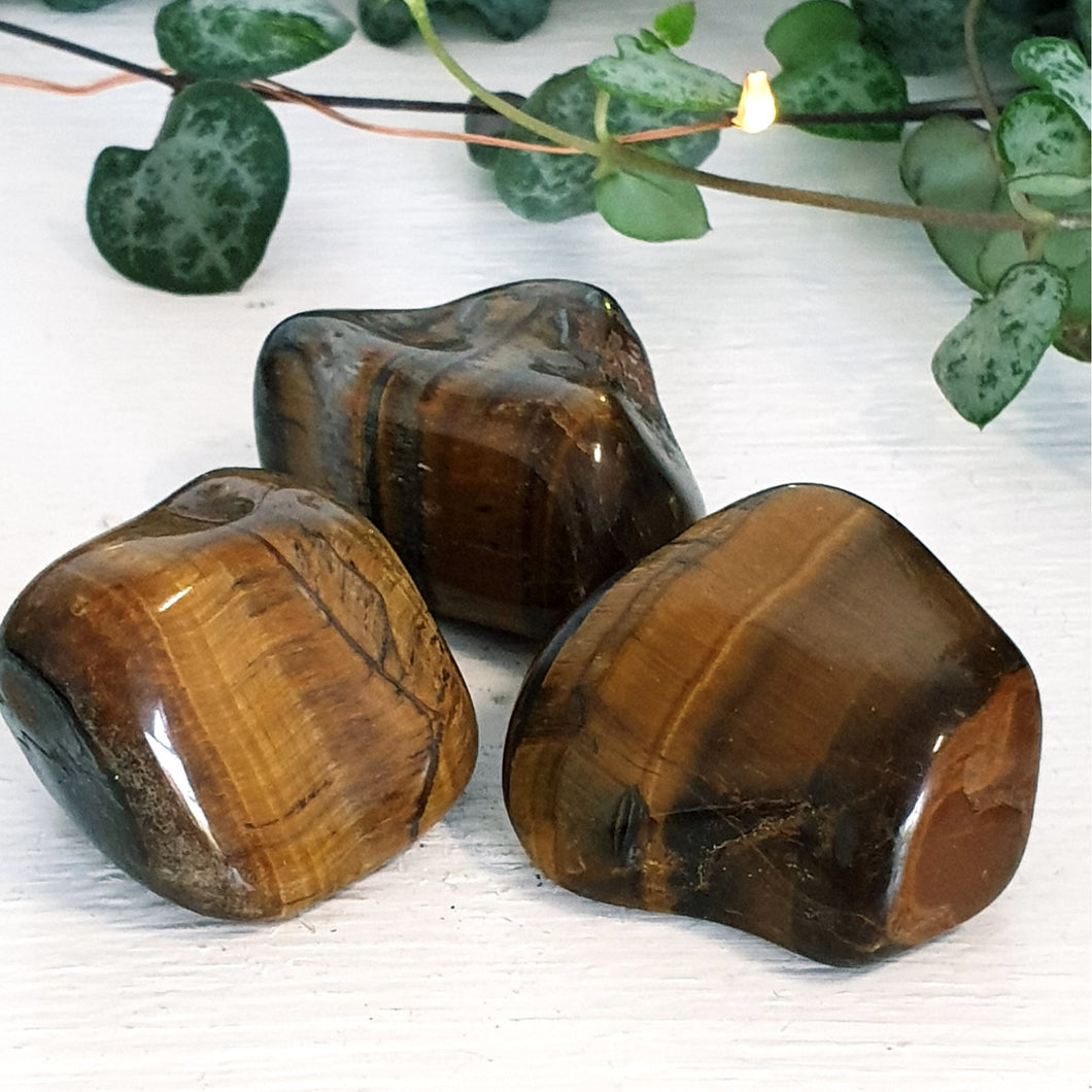 Tigers Eye (Tumbled)