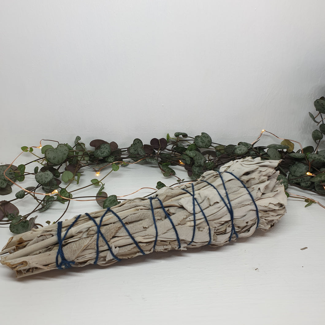 White Sage Smudge Sticks (Large)
