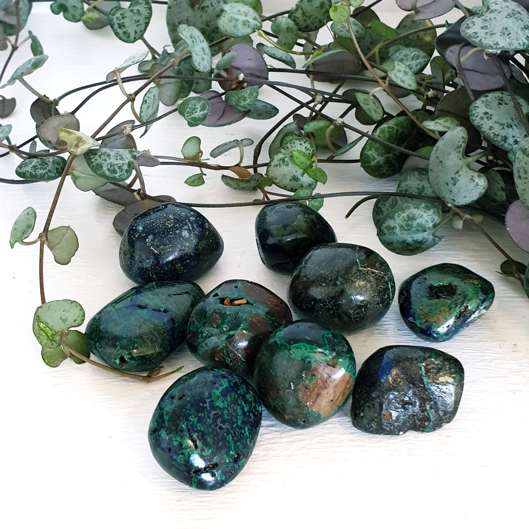 Azurite Malachite (Tumbled)