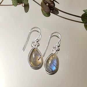 Labradorite Small Tear Drop Earrings