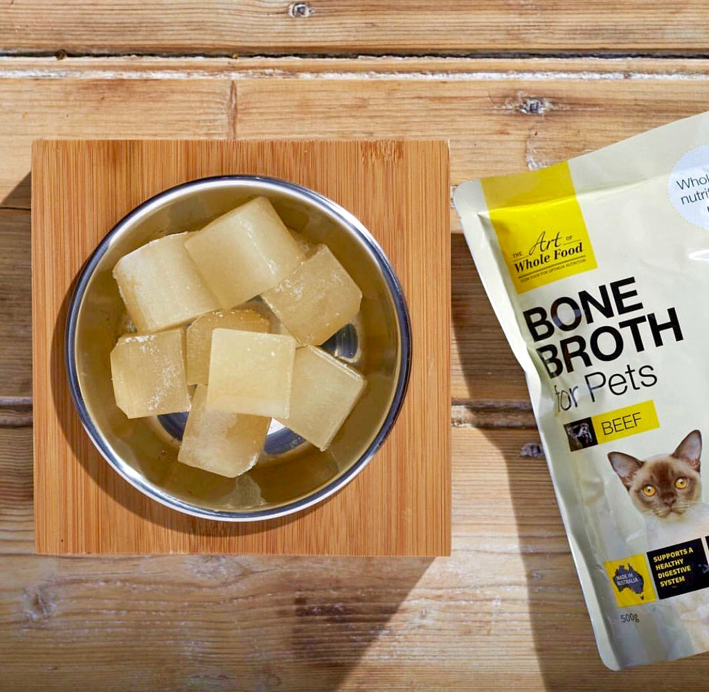 Bone Broths for Dogs