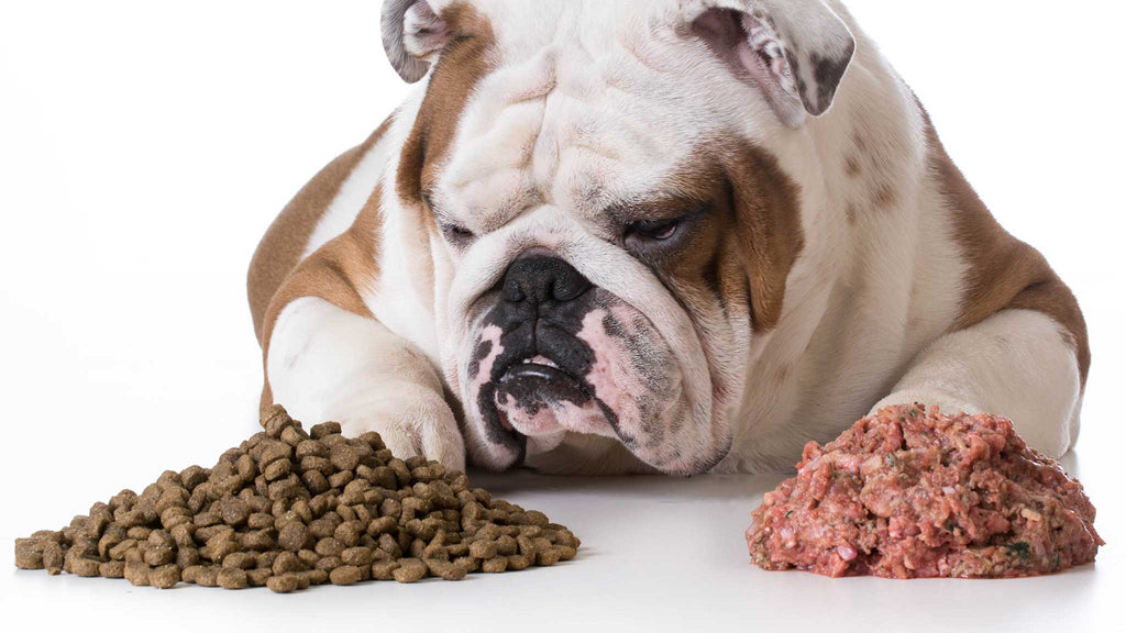 Can I Feed Kibble and Raw Together?