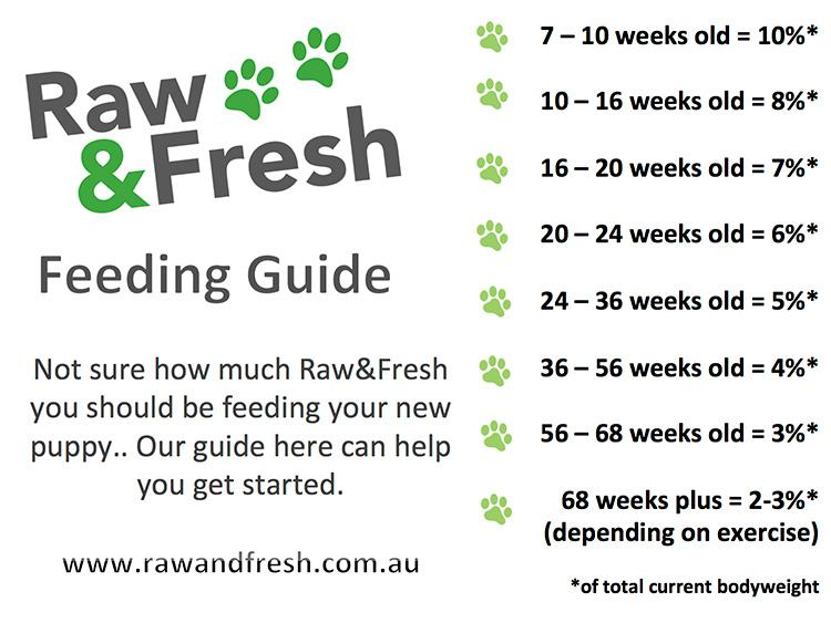 Raw Food Feeding Guide For Pets | Raw & Fresh