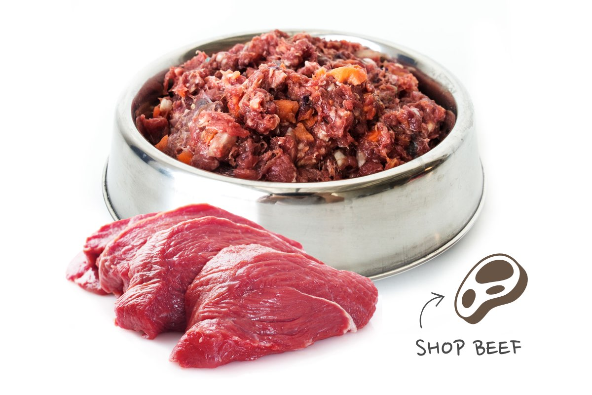 raw dog food beef mince