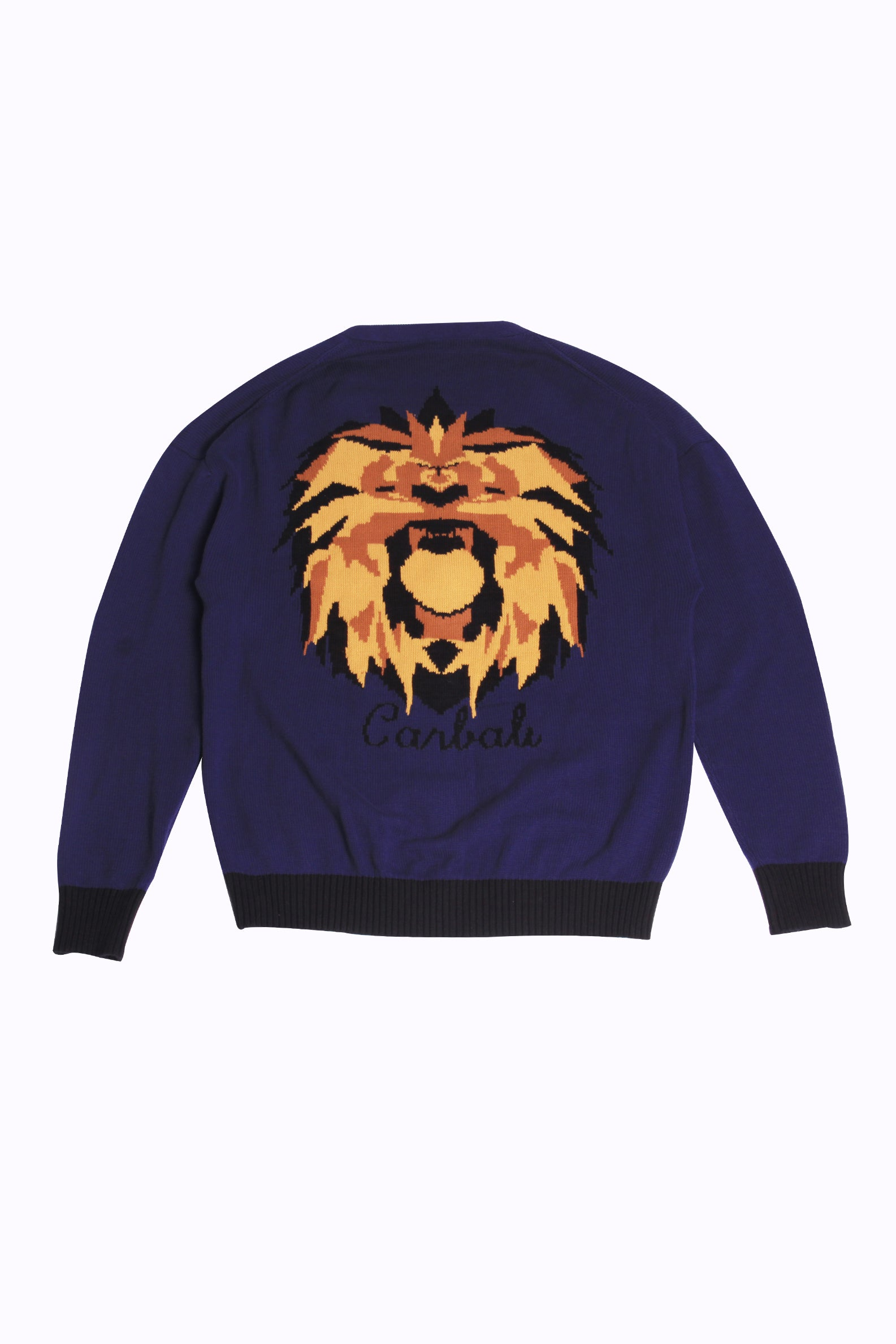 Knit Cardigan with Lion Pattern