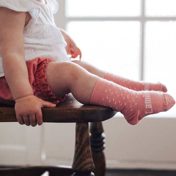Merino Crew Socks 15th Anniversary Limited Edition Rasberry Baby on Chair