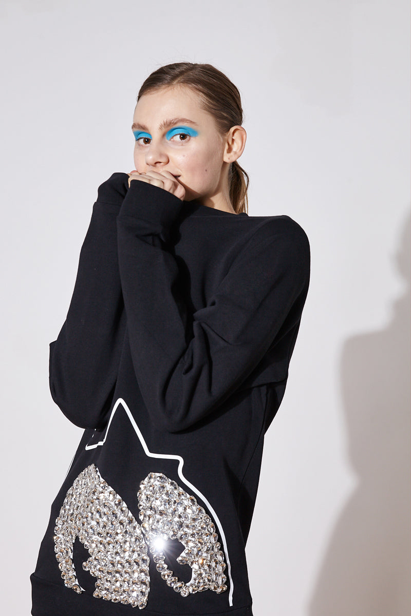 crystal embroidered sweatshirt