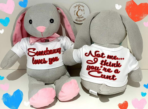 Somebunny Loves you- Not me You're a C*nt- Bunny