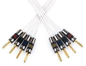 QED Speaker Cable 1m QED Silver Anniversary XT Bi-wire cable - Per Metre