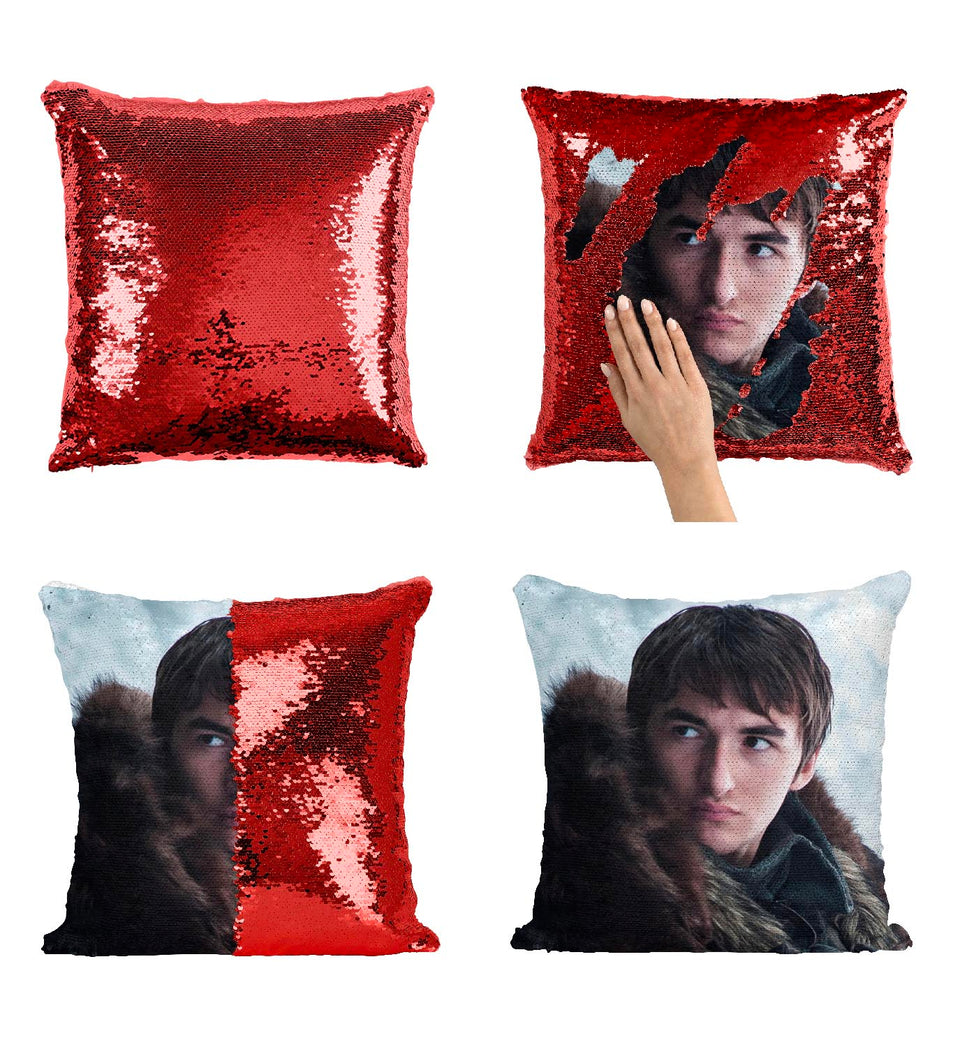 Bran Stark The Crow Misterious Character_MA0605 Game Of Thrones Sequin Pillow