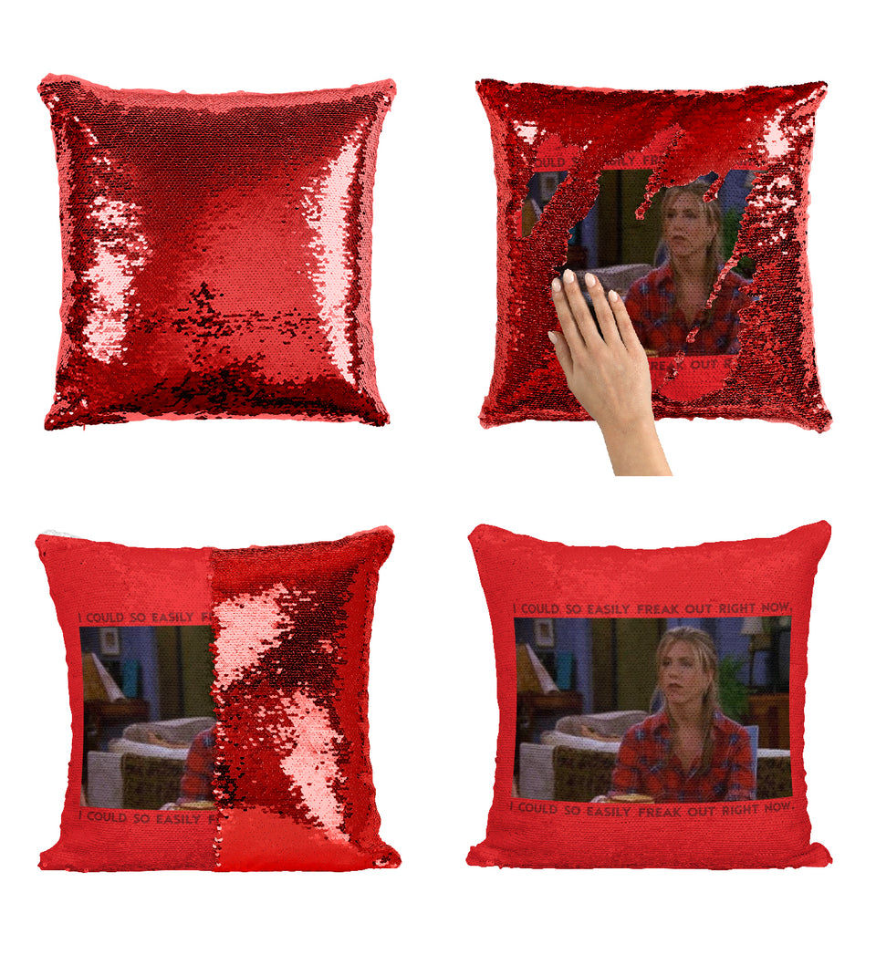 Friends TV Series Pillow MA0578