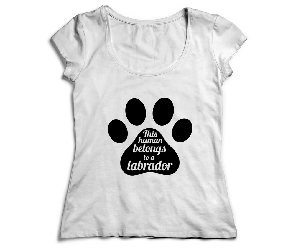 Women's T-Shirt | Desert Labrador Retriever Rescue