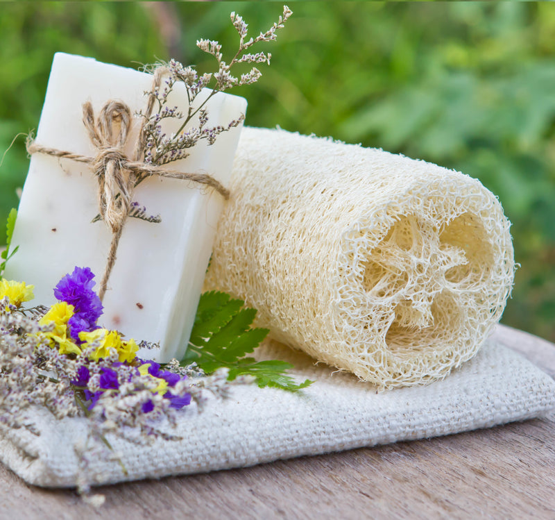 Natural Luffa Sponge (Set of 3)