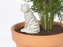 Load image into Gallery viewer, DOIY Design - Jangal White Tiger Self-Watering System