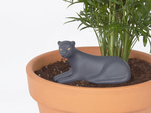 Load image into Gallery viewer, DOIY Design - Jangal Panther Self-Watering System