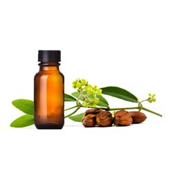 Goldstar Jojoba Oil