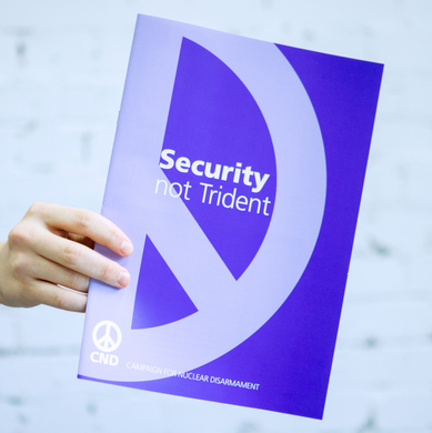 Briefing - Security Not Trident
