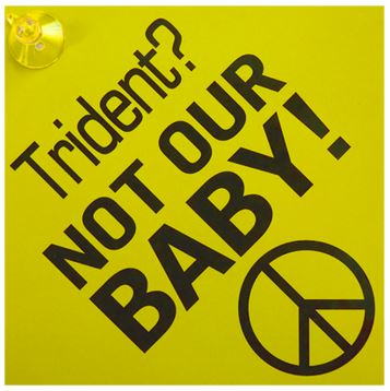 Trident? Not Our Baby! Window Hanger