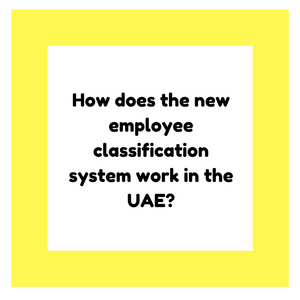 How does the new employee classification system work in the UAE?