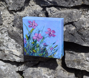 Burren Flowers Oil paintings