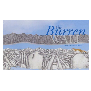 The Burren Wall