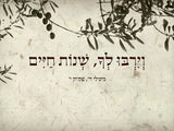 ברכה מהלב - Speed Plot לוח תכנון מחיק