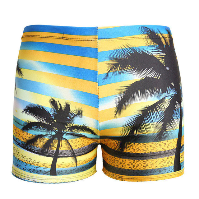 Professional Quality Quick-drying swimming briefs shorts mens swimming trunks men Bathing Suit male swimming trunks swimwear