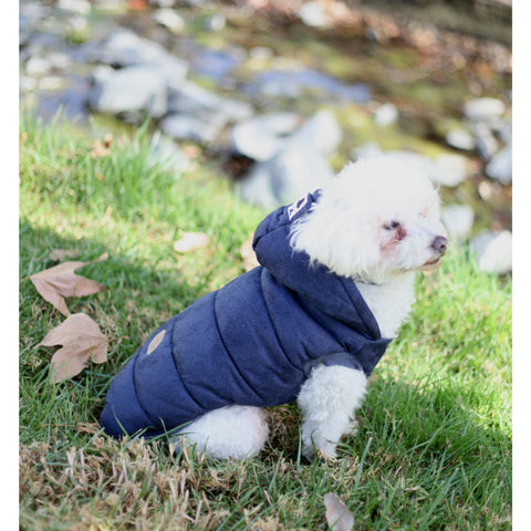 Mustache Puffer Hoody - Dogs - Chic Puppy