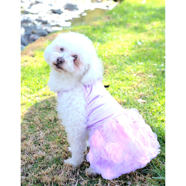 Matching Dog and Owner - Princess Flower Dress - Dogs