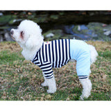 Matching Dog and Owner - French Stripe Outfit - Dogs