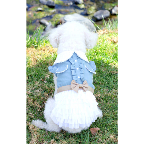 Matching Dog and Owner - Cowgirl Dog Dress - Dogs