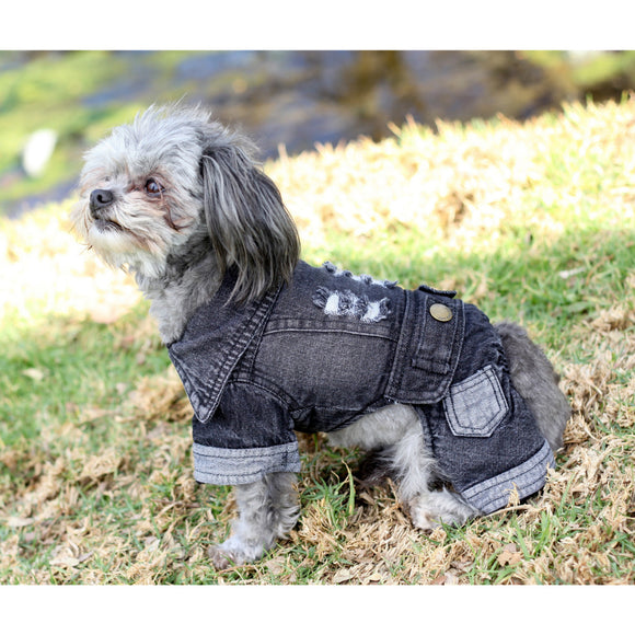 Matching Dog and Owner - Pup-itude Denim Outfit - Dogs