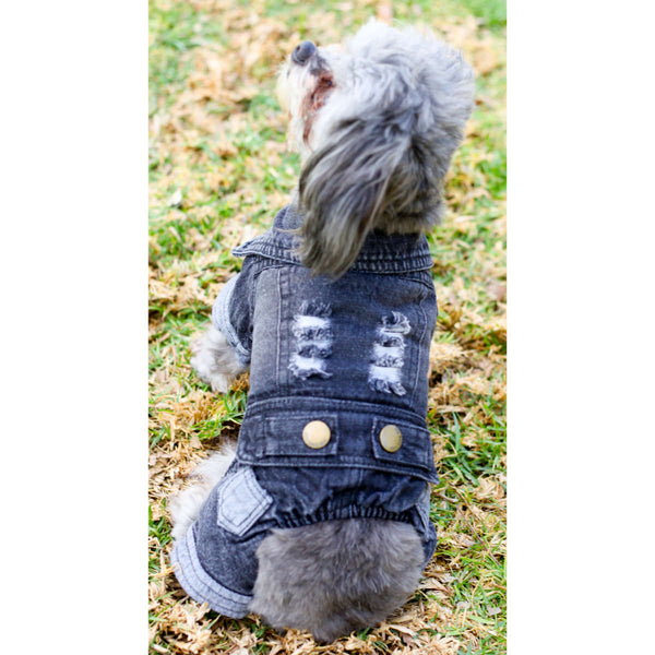 Matching Dog and Owner - Pup-itude Denim Dog Jacket - Dogs