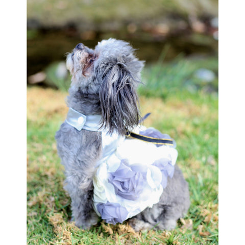 Matching Dog and Owner - Princess Flower Dog Dress - Dogs