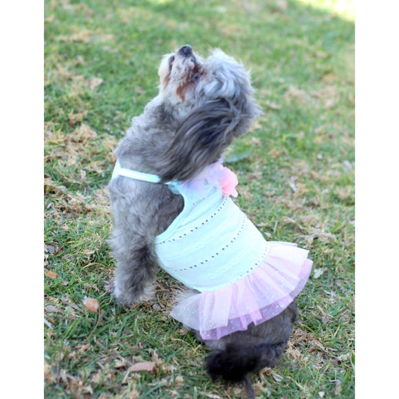 Matching Dog and Owner - Sunshine TuTu Dress - Dogs