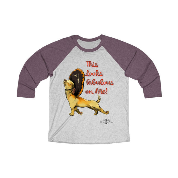 Matching Dog and Owner - This Looks Fabulous on Me! - Men Raglans - Men