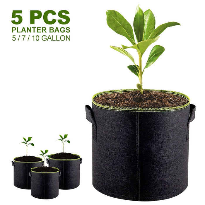 Growth Bag Container