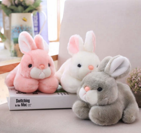 Rabbit Plush Toy
