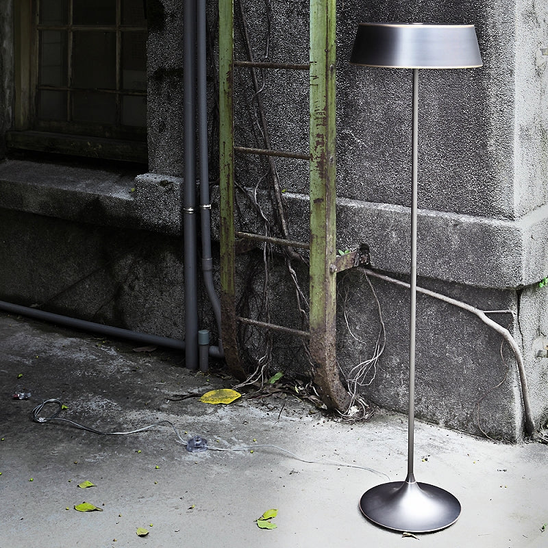 China Floor Lamp - Oil Bronze