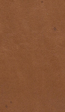 Leather - Pattern LE212