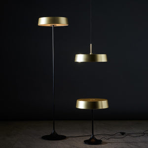 China LED Floor Lamp - Brass + Matte Black