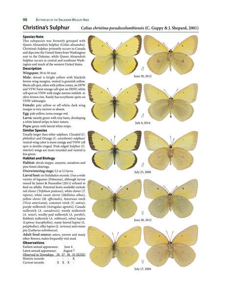 Butterflies of the Sinlahekin Wildlife Area - GRAY COVER