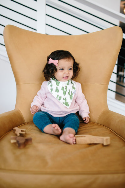 Copper Pearl Sage Bandana Bib Set