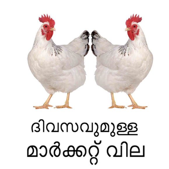 Chicken Daily Market Price - Mattannur
